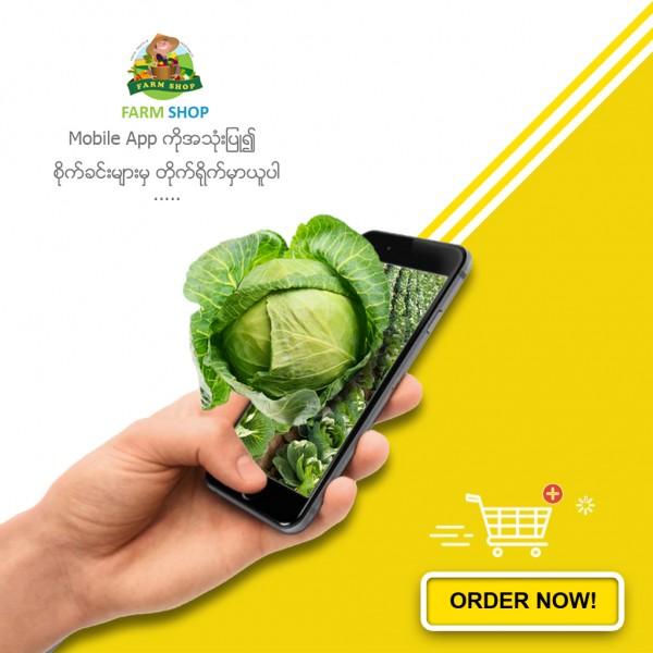 Farm Shop - Myanmar (Thingangyun, Myanmar) - Phone, Address